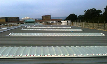Roofing Services - Standing Seam